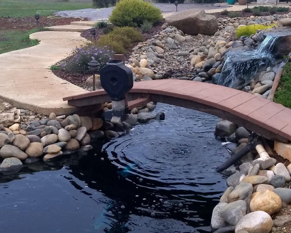 Automatic koi pond feeder ksf 2xl super feeder basic package for Koi pond basics