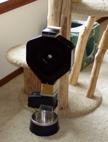 feeder-mounted-to-cat-tree-480.jpg